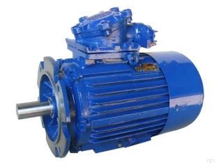 Электродвигатель АИММ
