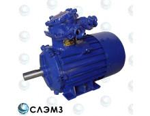 Электродвигатель АИММ 100 L2 и АИМ100L2