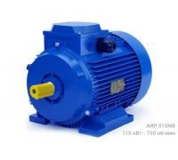 Электродвигатель АИР 315М8 - 110/750 | АИР 315 М8