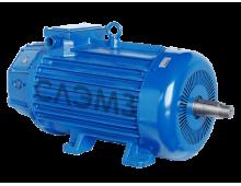 Электродвигатель МТН 613-10 (75 кВт 575 об)