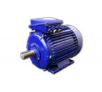 Электродвигатель 4АМУ 250 М8 (4АМУ 250М8)