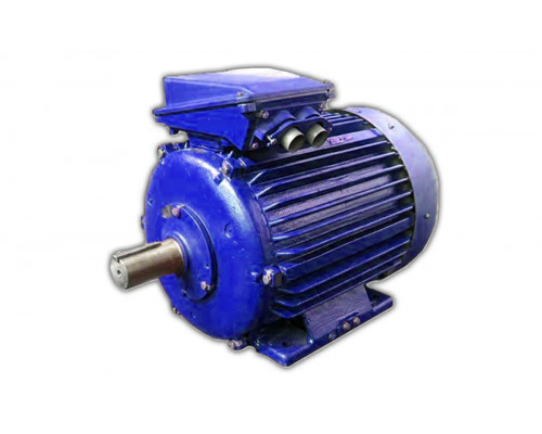Электродвигатель 4АМУ250S8