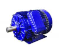 Электродвигатель 6АМУ 355 М4 (6АМУ 355М4)