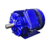 Электродвигатель 6АМУ 315 S2 (6АМУ 315S2)