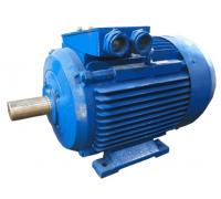Электродвигатель 4АМ250М2 (4А250М2, 5АМ250М2)