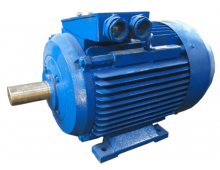 Электродвигатель 4АМ200L2 (4А250М4, 5АМ200L2)