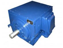 Электродвигатель 4АМН 315 М6 (5АМН 315М6)
