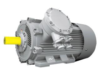 Взрывозащищенные электродвигатели ВАО2
