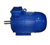 Электродвигатель 4АМ280S2 (4А280S2, 5АМ280S2)