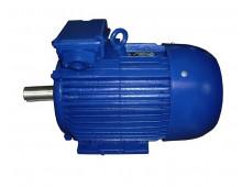 Электродвигатель 4АМ250S6 (4А250S6, 5АМ250S6)