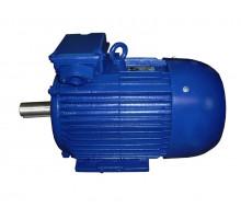 Электродвигатель 4АМ315S6 (4А315S6, 5АМ315S6)