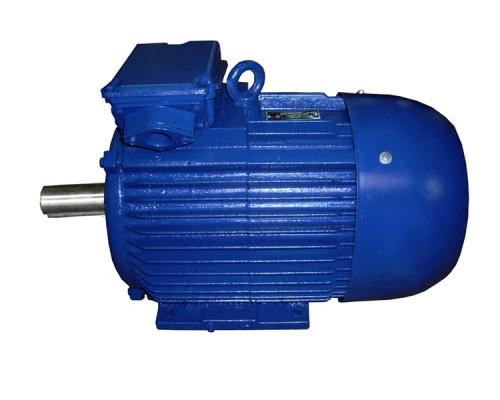 Электродвигатели 4АМ 315S2 и 5АМ 315S2