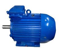 Электродвигатель 4АМ200L8 (4А200L8, 5АМ200L8)