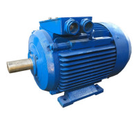 Электродвигатель 4АМ200М8 (4А200М8, 5АМ200М8)