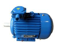 Электродвигатель 4АМ200М6 (4А200М6, 5АМ200М6)