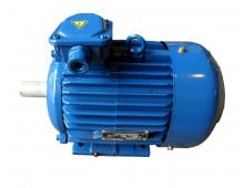 Электродвигатель 4АМ200L6 (4А200L6, 5АМ200L6)