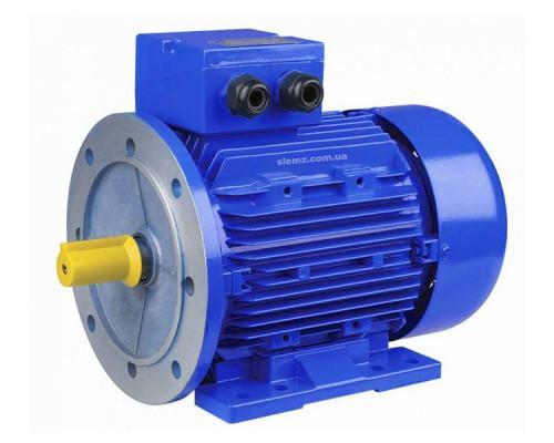 Электродвигатель 55 кВт 3000 об/мин - вид товара 1