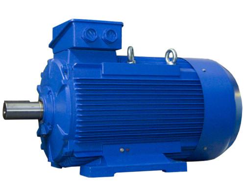Электродвигатель 55 кВт 3000 об/мин - вид товара 2