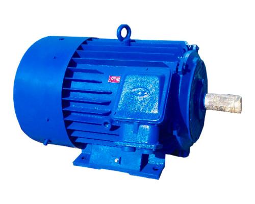 Электродвигатель 250 кВт 1000 об/мин подключение 380В 660В