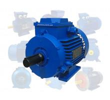 Электродвигатель 15 кВт 3000 об/мин