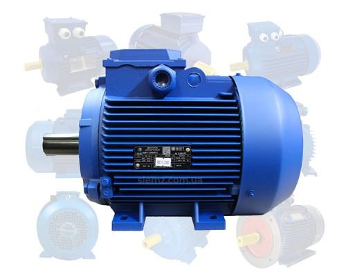 Электродвигатель трехфазный 22 кВт 750 об/мин