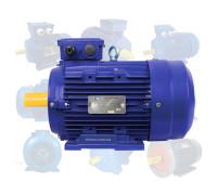 Электродвигатель 4 кВт 750 об/мин