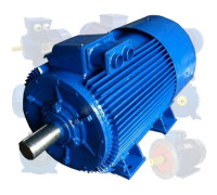 Электродвигатель 132 кВт 1000 об/мин
