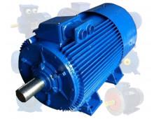 Электродвигатель 110 кВт 1000 об/мин