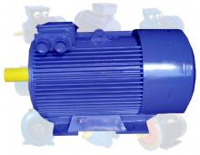Электродвигатель 250 кВт 1000 об/мин