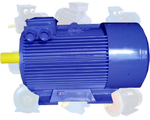 Электродвигатель 250 кВт 3000 об/мин