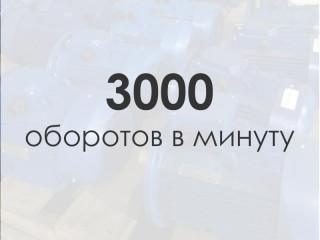 Электродвигатель 3000 об/мин