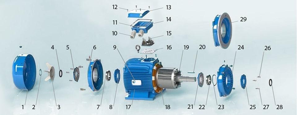 строение асинхронного электродвигателя