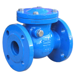 Обратный клапан Ду50 Ру10 из чугуна для воды 19ч16бр